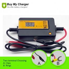 Recover Capacity 48V Car Battery Pulse Desulfator (Yellow)